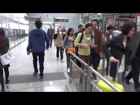 Путешествие в Китай #9: Шэньчжэнь перед Китайским новым годом