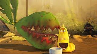 LARVA - PLANT BEST FRIEND | Cartoon Movie | Cartoons For Children | Larva Cartoon | LARVA Official