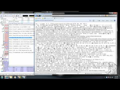 Immunet V3.0.0.18 Review en español