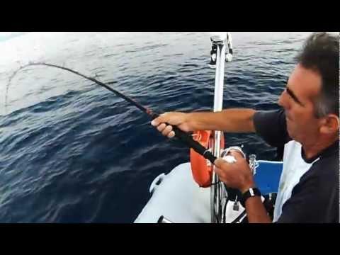 grouper  Ν-22-ΣΦΥΡΙΔΕΣ ΠΑΡΕΝΟΧΛΗΣΕΙΣ sotos fishing .wmv