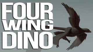 Dinosaur with FOUR WINGS Discovered!