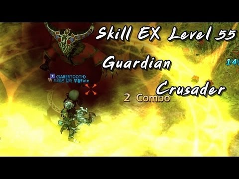 DN : Review Skill EX Lv.55 Guardian , Crusader