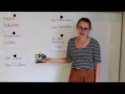 Niemiecki Od Poziomu B1 - Metody Na Naukę Słówek