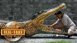 5 VERY STRANGE CREATURES - real or fake?