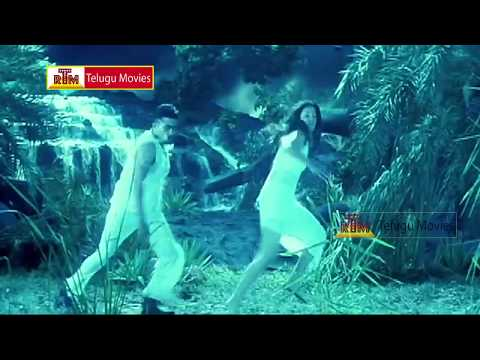 Sundarangudu - Telugu Movie Superhit Song - SuryaJyothika