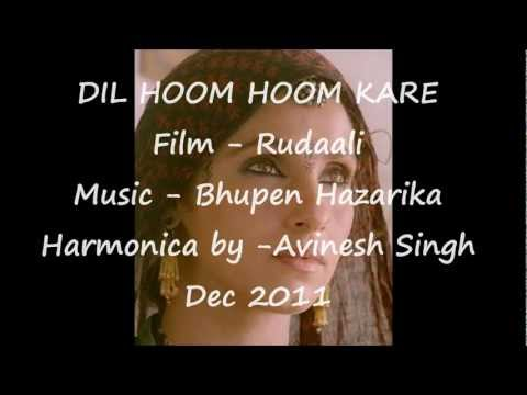 Dil Hoom Hoom Kare - Film Rudaali on Harmonica by Avinesh Singh...