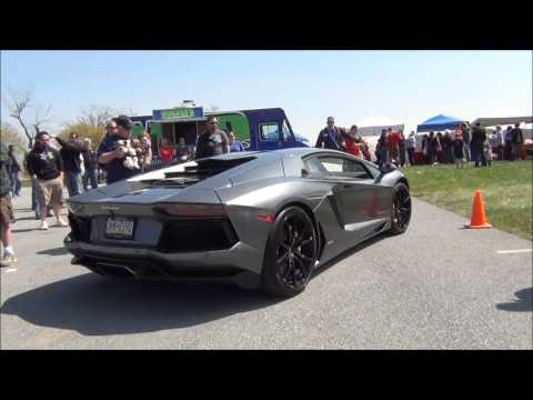 2014 Cool Cars For Cats & Canines Exotic Car Show Part #3