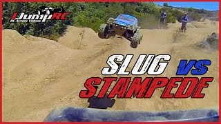 Slug vs Stampede 4X4 - Remote Controlled Dog Fight