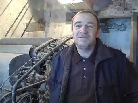 Vunovlacar iz Osecine-Obicaji Radjevine-Dobrivoje i Dobrila Pantelic