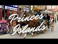 Lagu A day at the Princes&39; Islands  Büyükada  Istanbul, Turkey