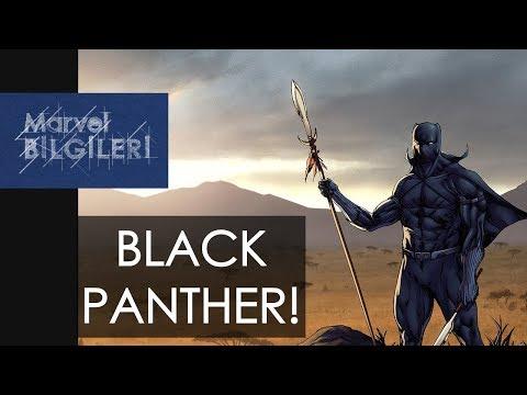 Black Panther Kimdir ? Nedir ?