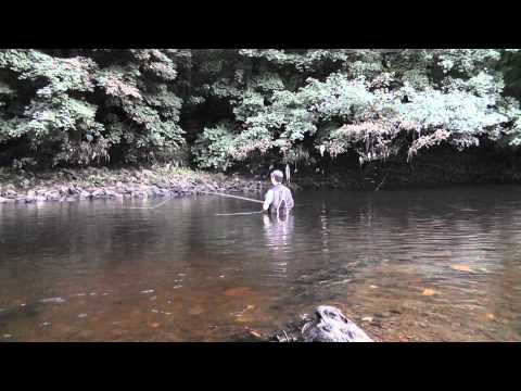 Fishing The Elk Hair Caddis - Fly Fishing 2012