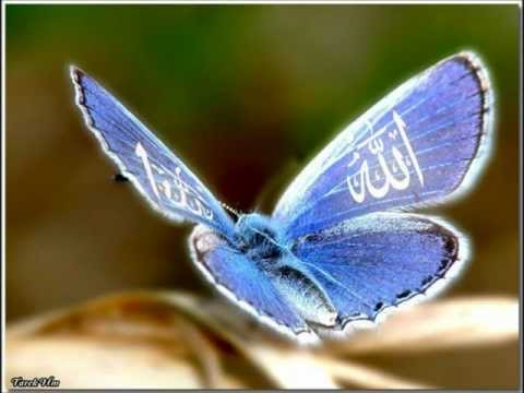 Magnifique   Anasheed Madina Madina nasheed video