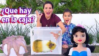 ¿QUE HAY EN LA CAJA? | AnaNana Toys