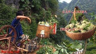 Cách Tời Na Trên Núi  Đá Xuống Của Người  Dân Đồng Bành Chi Lăng Lạng Sơn Chế Tạo I  Thai Lạng Sơn