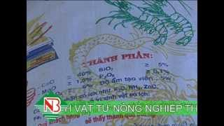 Phan bon Dia Long niem kieu hanh Viet Nam