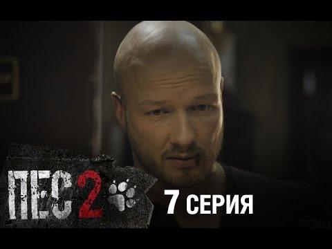 Сериал Пес - 2 сезон - 7 серия