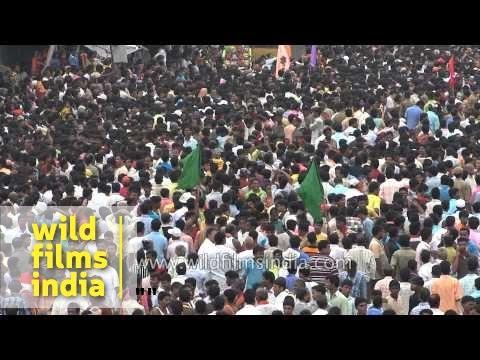 Scores of devotees converge for Jagannath Rath Yatra - Puri, Odisha