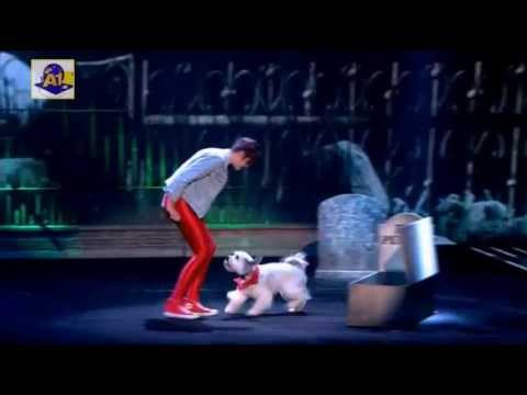 Ashley and Pudsey Thriller Britains got talent 2013
