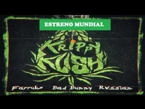Krypy and kush bad bunny