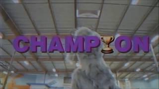 Fall Out Boy - Champion [lyrics]