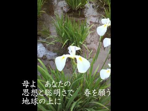 植松真美の画像 p1_21