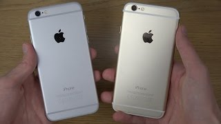 iPhone 6: Gold or Silver?