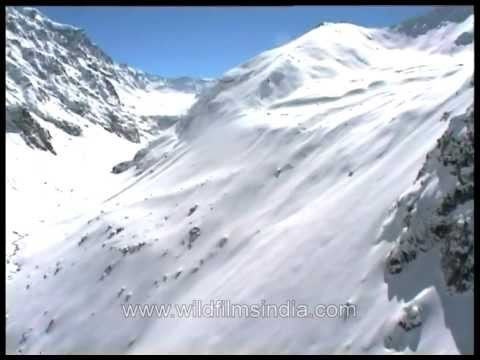 Malana from ahigh: Aerial view of snowy mountains of Himachal Pradesh