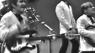 Watch Dave Clark Five Glad All Over video