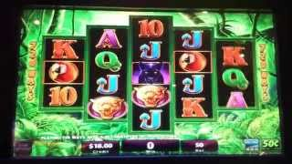Prowling Panther Slot $25 Per Spin Live Play with Bonus