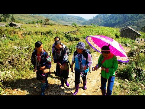 Travel - 2010 Uncut trekking Video to Black Hmong Sapa Village. edited in HD p5/6 (HD