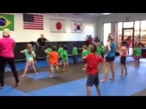 Holt Lutheran Schools Karate Field Trip - 07/11/2013