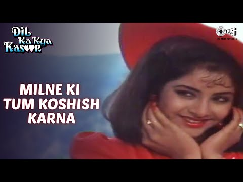 Milne Ki Tum Koshish Karna - Dil Ka Kya Kasoor - Divya Bharti & Prithvi - Full Song