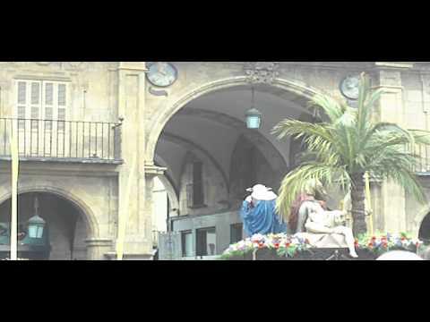 Procesión de La Borriquilla en la Plaza Mayor. Semana Santa Salamanca 2013