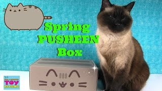 Spring Pusheen Box Unboxing Exclusive Products | PSToyReviews