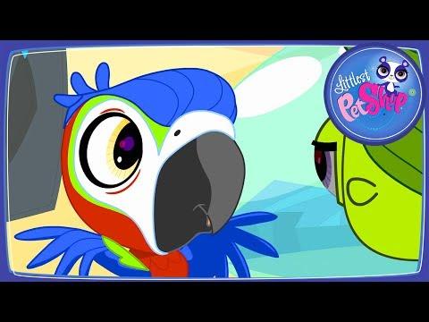 Мультики для девочек. Лучшие мультфильмы онлайн #ПЕТШОП Маленький Зоомагазин серия 8 Блайс влюбилась