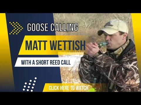 Short Reed Goose Calling /