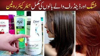 How to Choose Best Shampoo, Serum for Dry, Frizzy & Dandruff Hair - Hair Care Routine Damaged Hair