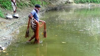 Net Fishing | Catching Fish With Cast Net | Net Fishing in the village (Part-139)