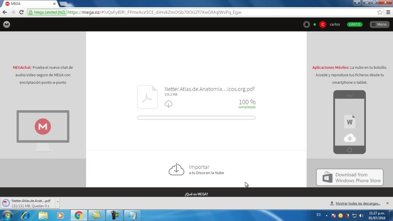 Atlas De Netter Descargar Gratis En Espaol Download
