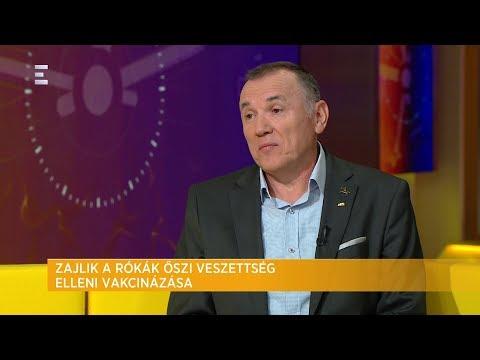 Két héten át tart a rókák veszettség elleni vakcinázása - Dr. Vajda Lajos- ECHO TV