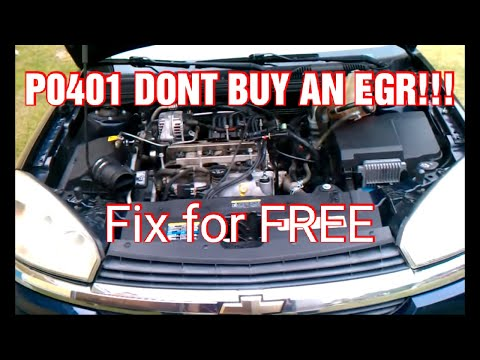 EGR Code P0401 DONT REPLACE EGR