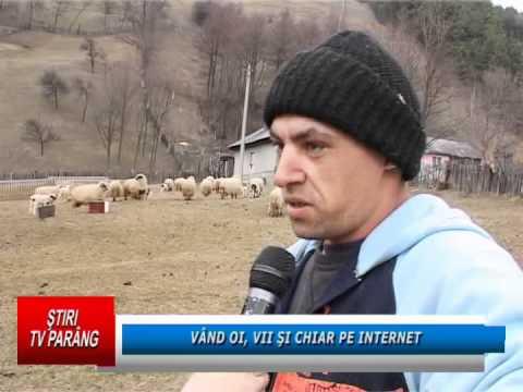 Vand oi, vii si chiar pe internet