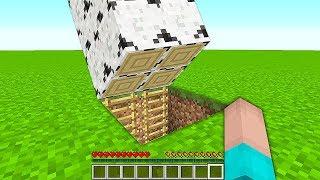 НУБ ПОСТРОИЛ ДОМ ПОД ДЕРЕВОМ В Майнкрафте! Minecraft Мультики Майнкрафт троллинг Нуб и Про