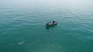 Fishing in Moreton Bay - Drone Footage