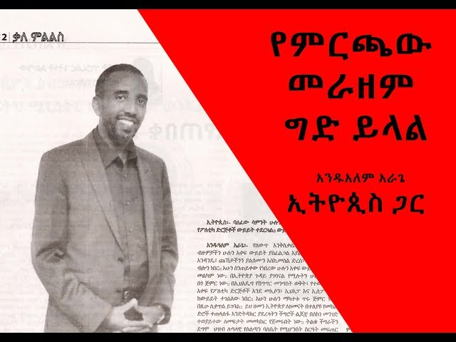 Ethiopia: Interview Andualem Arage