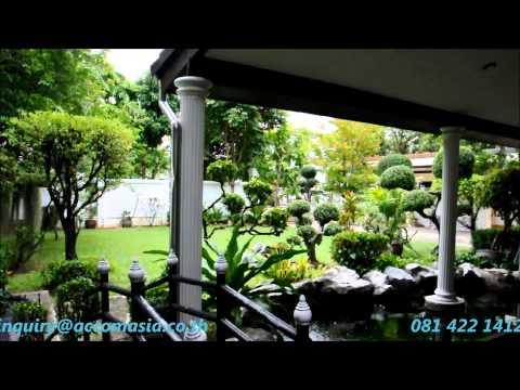 House for rent in Bangkok – sukhumvit | On Nut BTS