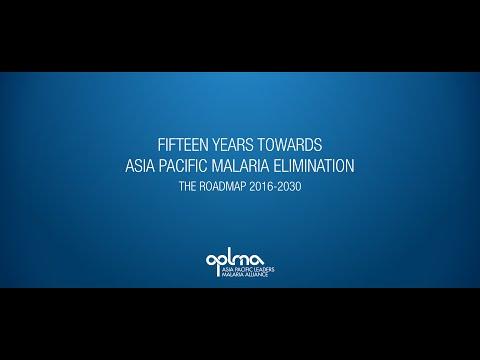 Fifteen years towards Regional Malaria Elimination- the Roadmap