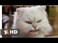 Download Stuart Little 2 (2002) - Silver Lining Scene (4/10) | Movieclips in Mp3, Mp4 and 3GP