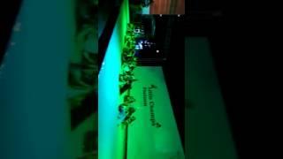 Sunetra dance